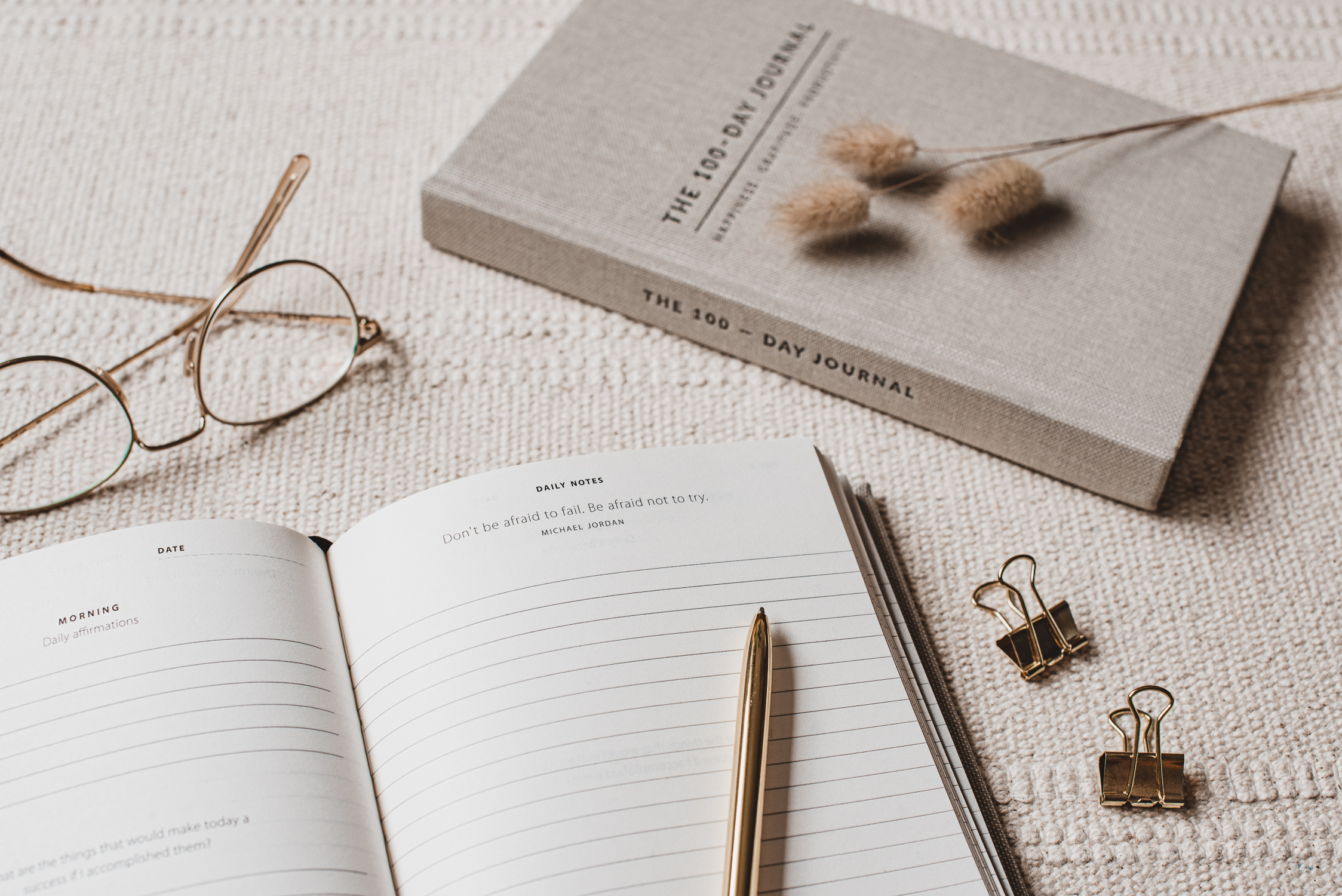 The 100 day journal - ByDenize